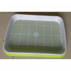 Microgreen growing tray